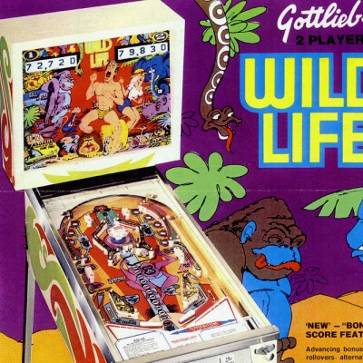 gottlieb, wild life, pinball, sales, price, date, city, condition, auction, ebay, private sale, retail sale, pinball machine, pinball price