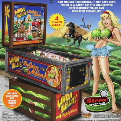 stern, whoa nellie big juicy melons, pinball, sales, price, date, city, condition, auction, ebay, private sale, retail sale, pinball machine, pinball price